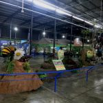 parque-imaginacion-lima-science-center-22