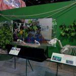 parque-imaginacion-lima-science-center-25