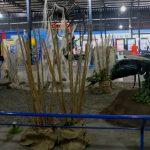 parque-imaginacion-lima-science-center-26