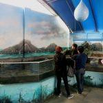 parque-imaginacion-lima-science-center-55