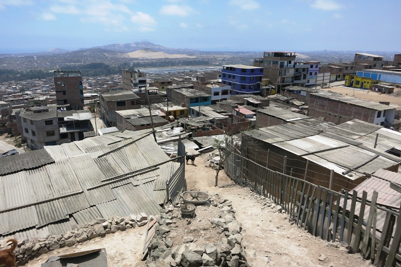 villa-el-salvador-hillside-shantytown-slums-dog